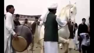 Лезгинка   танцующие лошади — Яндекс Видео(, 2012-10-20T16:52:32.000Z)