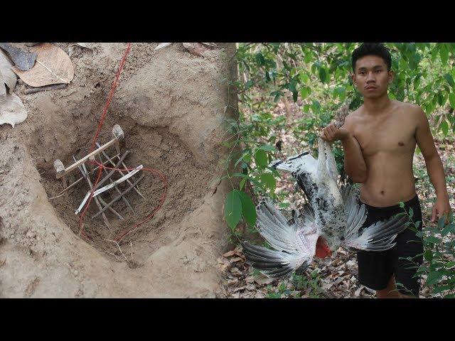 เอาชีวิตรอด ทำกับดักดักนกป่ายักษ์ ในพ่มา !!!