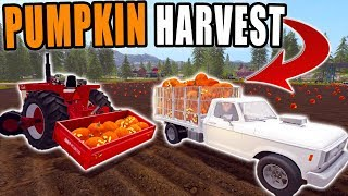 HARVESTING + DELIVERYING AT THE PUMPKIN PATCH | FARMING SIMULATOR 2017