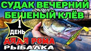 1 Й ДЕНЬ СУДАК ВЕЧЕРНИЙ БЕШЕНЫЙ КЛЁВ рыбалка с ночёвкой рыбалка на Днепре с лодки