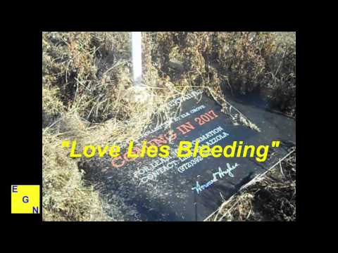 Howard Hughes Corp and City of Elk Grove - Love Lies Bleeding