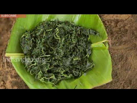 Tribal cuisine made of Spinach - Senthal Adaku