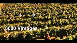 Visit Georgia, Cradle of Wine – Посетите Грузию, колыбель вина