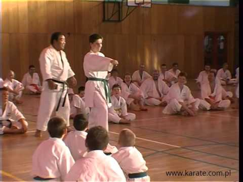 Fumio Demura On Strengths And Weakness Of Zenkutsu Dachi | Best Budo Lessons