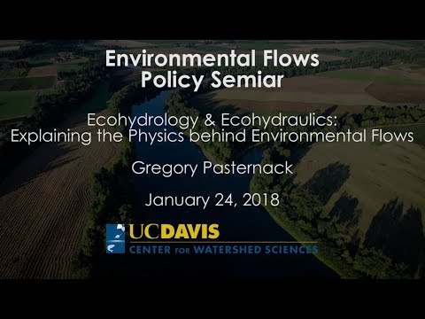 Ecohydrology & Ecohydraulics: Explaining the Physics behind Environmental Flows