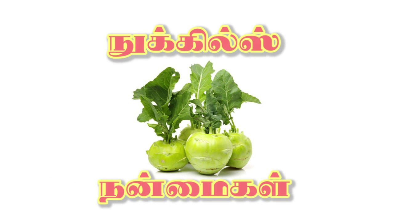noolkol benefits in tamil (நூல்கோல் நன்மைகள்)
