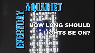 how long should aquarium lights be on