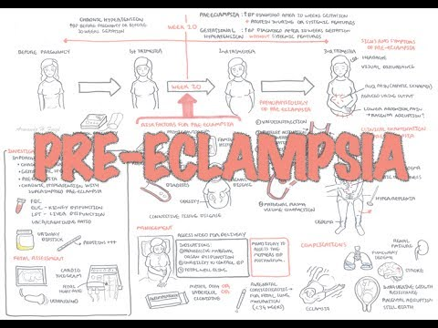 Pre Eclampsia - Overview (pathophysiology, presentation, treatment)