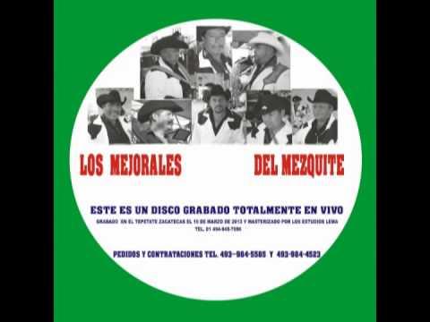 LOS MEJORALES DEL MEZQUITE 2014 .....chaparrita enlutadita