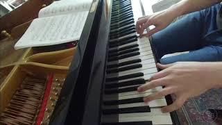 Schumann: Kinderszenen op.15 no.3 - Hasche-mann