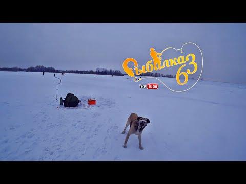 Поклевка леща 2020,  Хороший прикорм решает все,  Рыбалка зимой в палатке