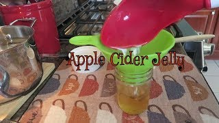 Canning Homemade Apple Cider Jelly ~ The Kneady Homesteader