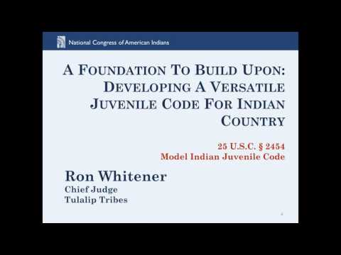 Tribal Juvenile Justice:  How a Model Code Can Inform Local Decision-Making