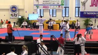 Gambar cover Taekwondo ITF - Copa del Mundo Jamaica 2014 (Montego Bay)