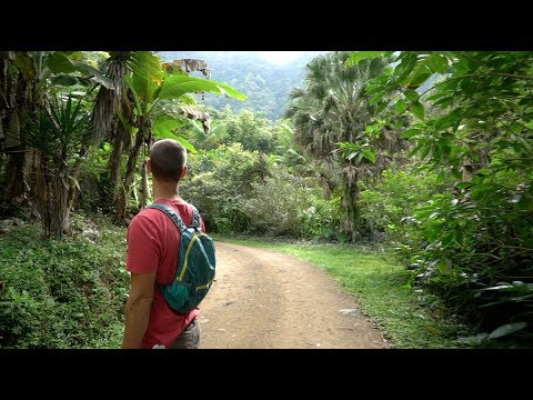 Costa Rica Permaculture Farm Tour Series: Day 1 & Preview