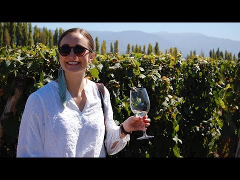 Incredible Winery Bike Tour Mendoza Argentina