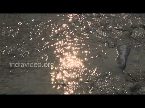 Sound of River flowing - 1