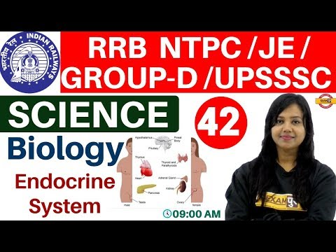 Class-42   RRB NTPC/JE/GROUP-D /UPSSSC/SSC   Science    Biology  By Amrita Ma'am  Endocrine System