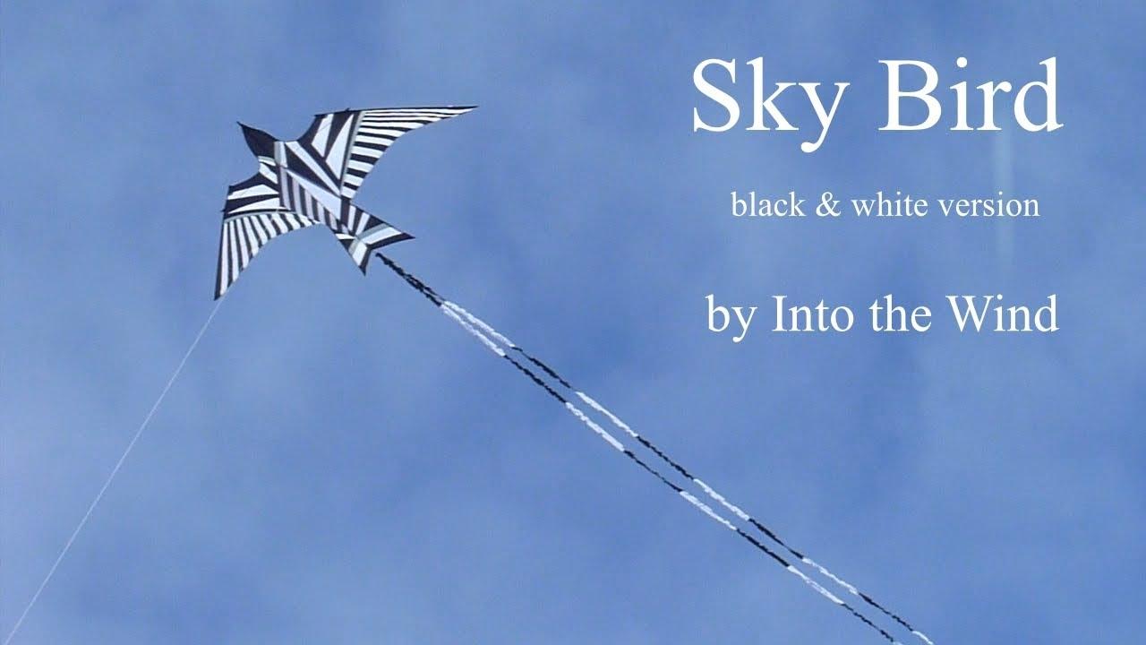 Sky Bird Kite Youtube