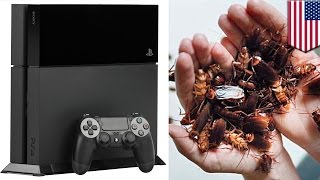 플레이스테이션 게임기 안에 바퀴벌레가 우글우글