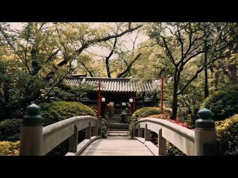 Видео открытка из Японии от Севрука Алексея и Наталии - Познавательные и прикольные видеоролики