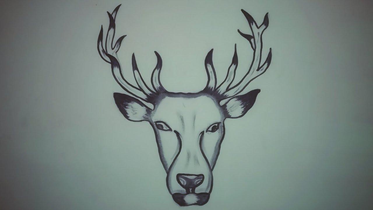 Simple Wall Drawing Deer Step By Step Drawing Youtube