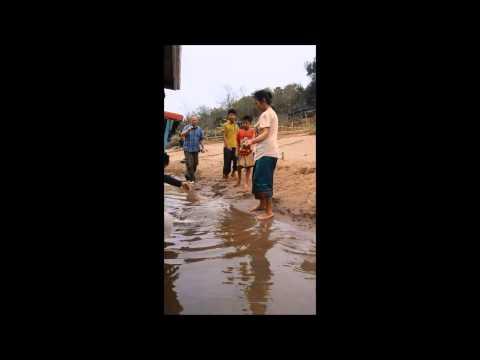 Laos Mars2015 Vente poisson chat NamOu