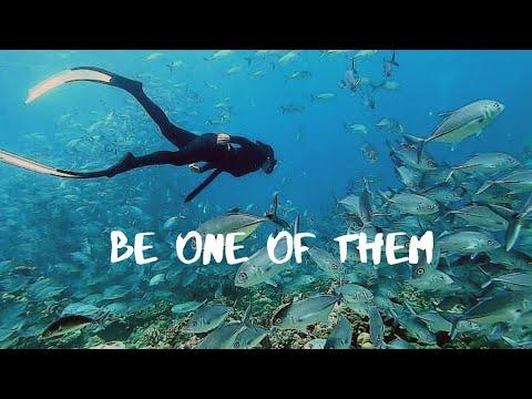 Freediving Philippines   Play And Dive Resort Bauan Batangas