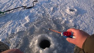 Зимняя рыбалка в Сибири Ловим окуня на мормышку Размер окуня спортивный