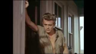 The James Dean Collection Trailer