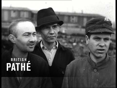 Buchenwald Atrocities (1945)