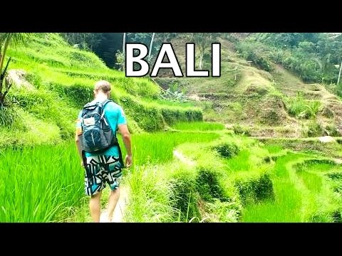 BACKPACKING ASIA I Indonesia: Bali - Surfing, Monkey Forest, Rice fields and Balinese food!