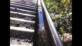 Gutter Cleaning Alexandria Sydney