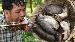 Primitive Technology Guy - Finding Giant Rat Holes and Eat Rats