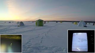 Зимняя ловля корюшки 2019 / Winter smelt fishing 2019
