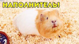 Наполнитель Для Морских Свинок: Коврик ПВХ, Опилки, Гранулы / Свинки Шоу / SvinkiShow