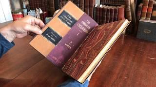 American Encyclopedia c.1878 Salesman Sample 18 color litho maps of world rare book atlas