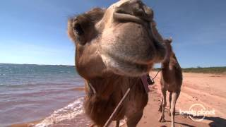 The Kimberley - Australia - Lonely Planet travel video