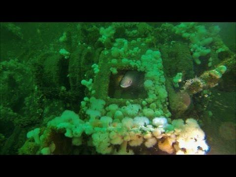 MV Bijou, Wreck Dive, North Wales