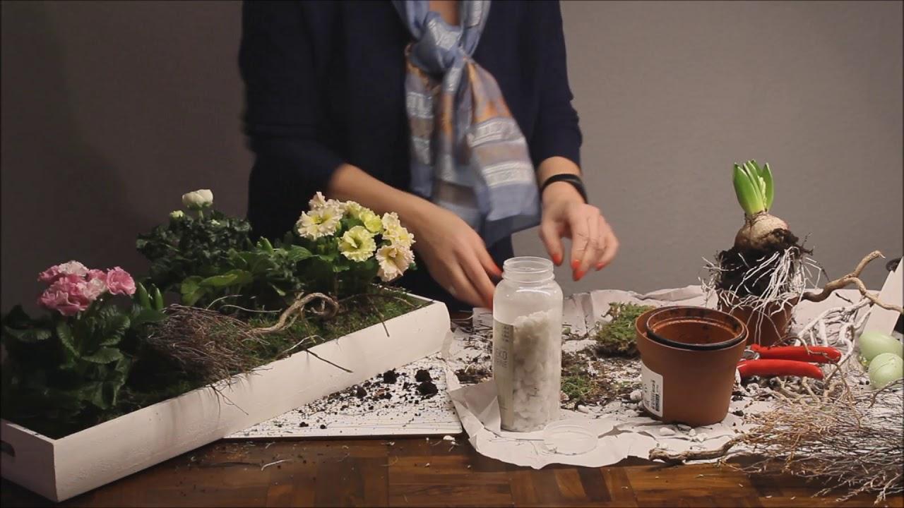 DIY Schnelle Frühlingsdeko   Bärbel´s Wohn U0026 Deko Ideen
