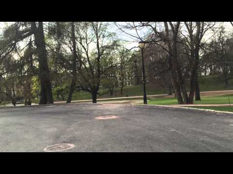Royal Palace Oslo Gardens