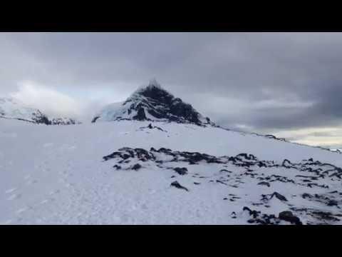Antarctica #15 - Penguins On Orne Island