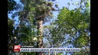 Destino Paraguay en 24 Horas Central - TVN Chile
