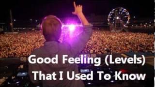 Avicii feat. Gotye & Flo Rida - Good Feeling (Levels) That I Used To Know