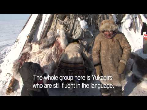 Voices from the Tundra