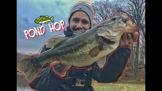 Adjust and SUCCEED: POND Hopping for a Trophy BASS!