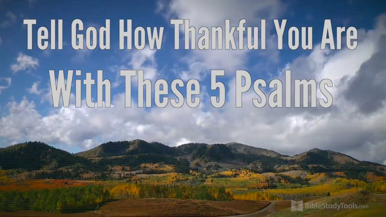 34 Thanksgiving Quotes to Inspire Giving Gratitude!