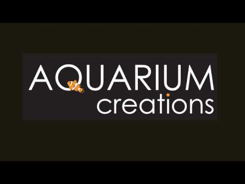 Book Aquarium Creations Sàrl