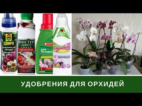 Подкормка Орхидей, Удобрение Орхидей, Витамины, Чесночная Вода и тп
