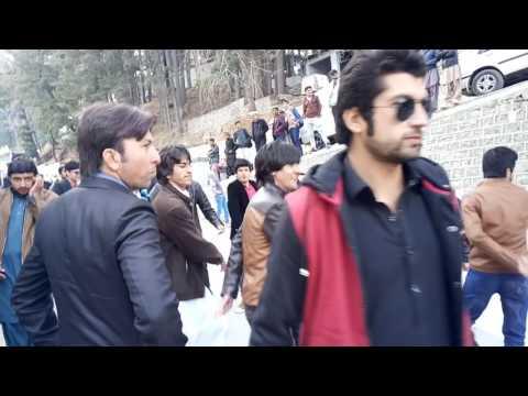 ayubia, student dance in  ayubia, Hazara university student dance in ayubia,